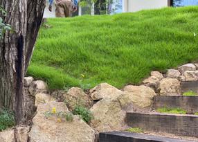 雨の日の仕事 振り返り(オリジナル植物棚の薦め)