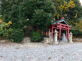 公共の杜 苦楽園神社(スギは貴重な地域資源)後編