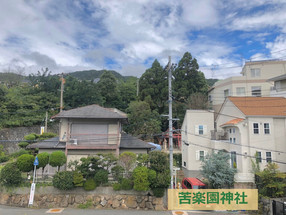 公共の杜 苦楽園神社(スギは貴重な地域資源)前編