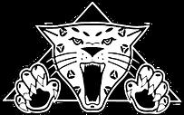 jaguar-2b7e0a3a2f5446fa323ccfae74b13843.