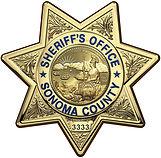 nty_sheriff_office_badge_16x16_plasma_sh