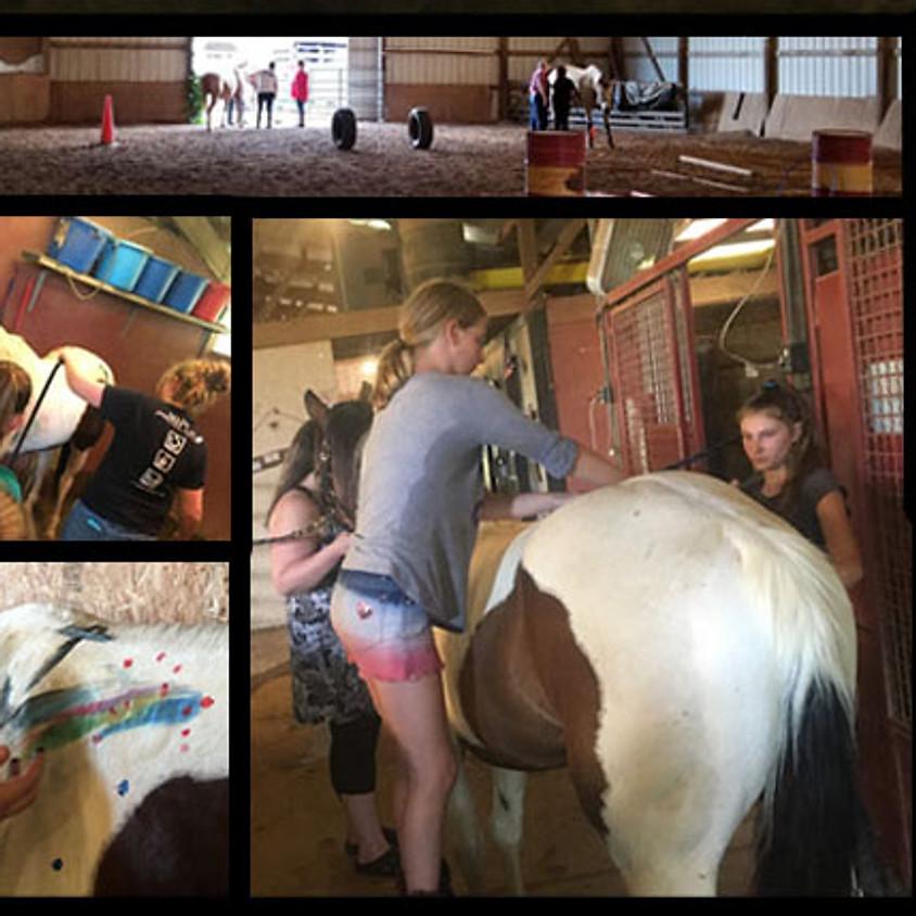 The Basics Summer Horse Camp