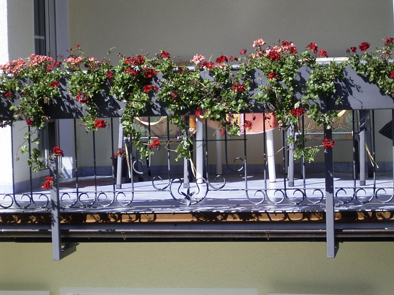 Geländer mit Blumenkasten