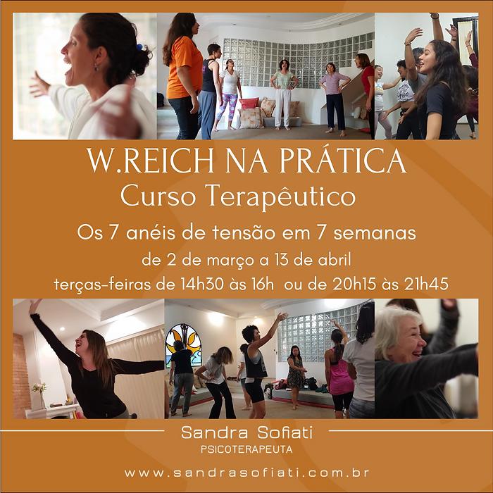 W.REICH NA PRÁTICA Curso Terapêutico.p