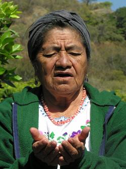 Mexico 2006 289