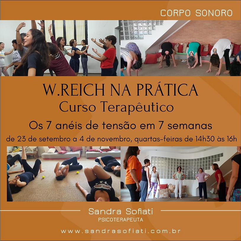 Cópia_de_W.REICH_NA_PRÁTICA_Curso_Te