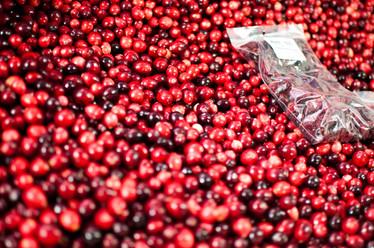 Les cranberries du marché
