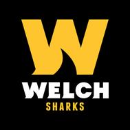 Welch Sharks Swim Team
