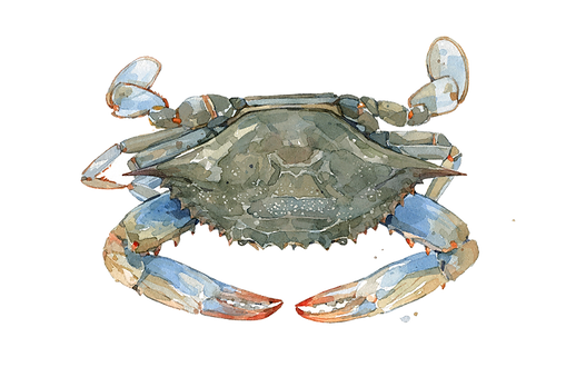 blue-crab_0.png