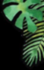 foliage2.png