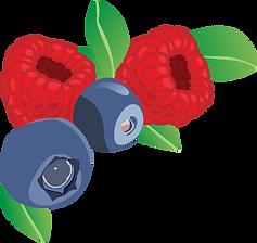 fruit1.png
