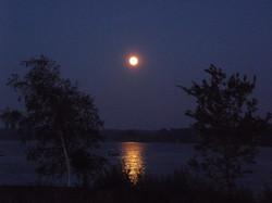 Waterside Manor Moonlight