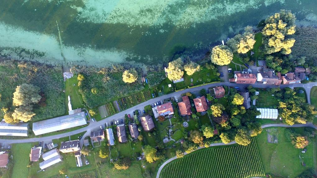 Haus Konrad in der Seestraße Insel Reichenau