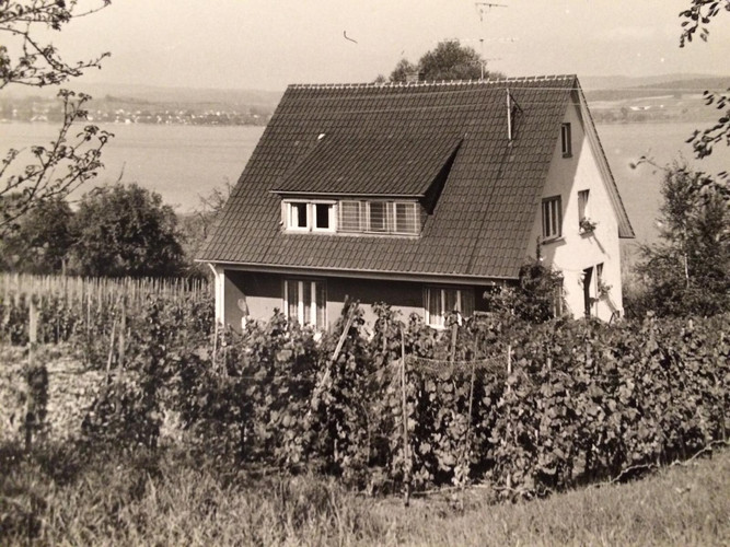 Blick vom hinteren Garten in der 60er-Jahren
