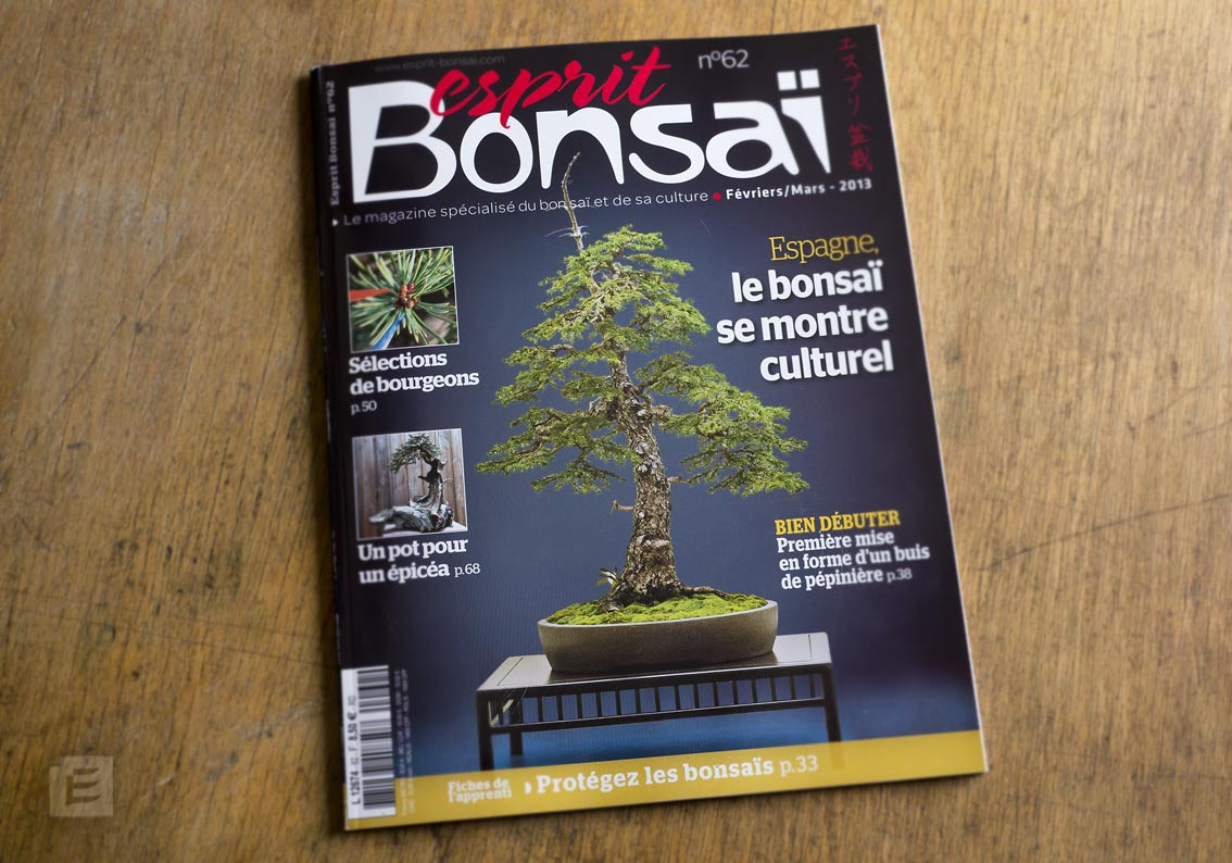 Another article wrote on my work in Bonsai Esprit (2013)