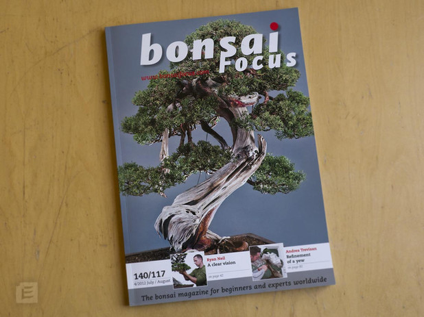 An article about my work published in Bonsai Focus (2012)
