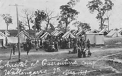 quarantine wallangara 1919.jpg