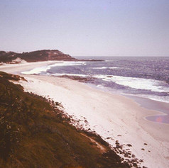 Shelley Beach, Ballina 1978