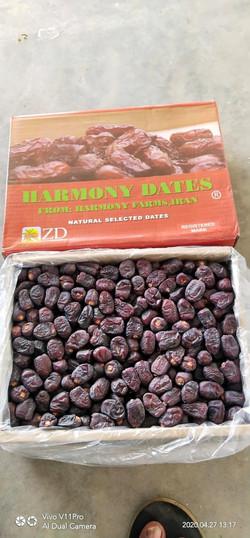 dates-dryfruits