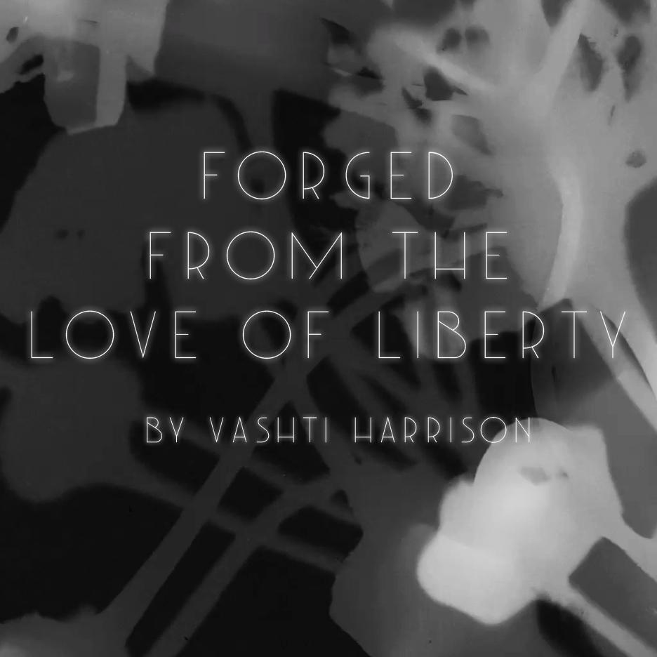 Resultado de imagem para vashti harrison forged from the love of liberty