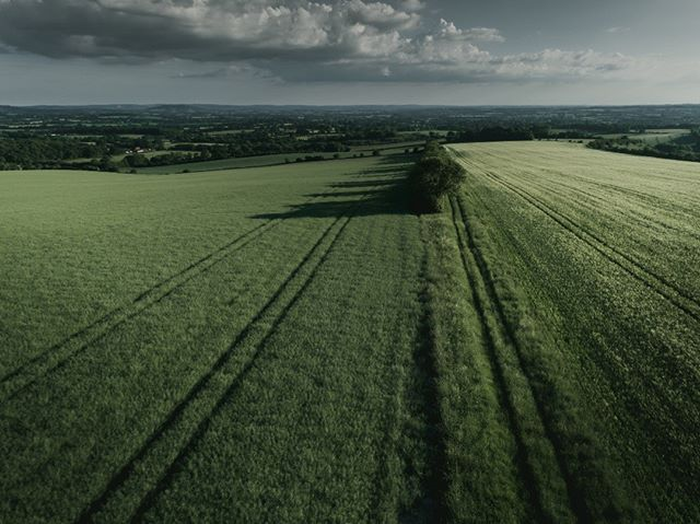 Green Fields of Salisbury Plain