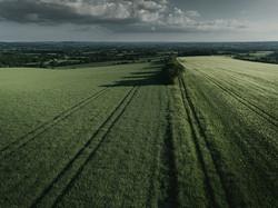 Green Fields of Salisbury Plain