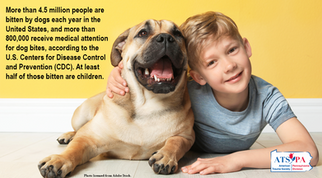 Dog Bite CDC Numbers.png