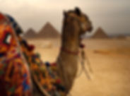 Египет- Кайро и пирамидите