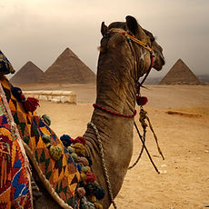 Egypt Vacation with Zephyr Travel Curators