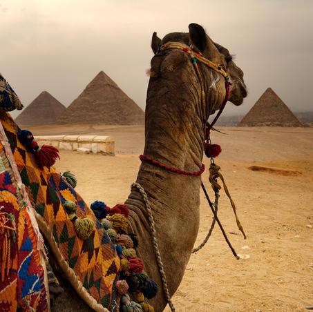 Egipto - Cairo y Los Tesoros del Nilo.