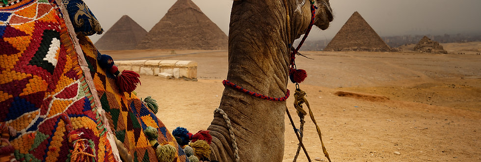 Egipto: Pago de Inscripción