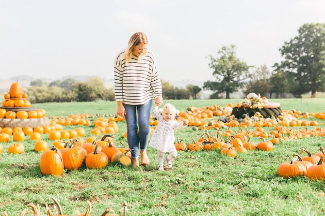 Pumpkin Patch with Rosie