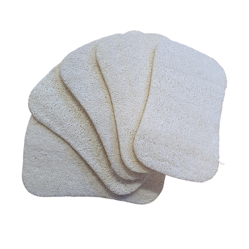 Loofah Cleansing Pad