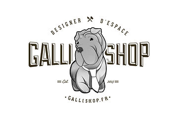 logo designer.jpg