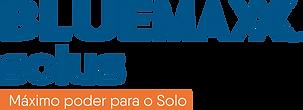 logo bluemax.png