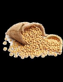 kisspng-dal-soy-milk-soybean-health-food