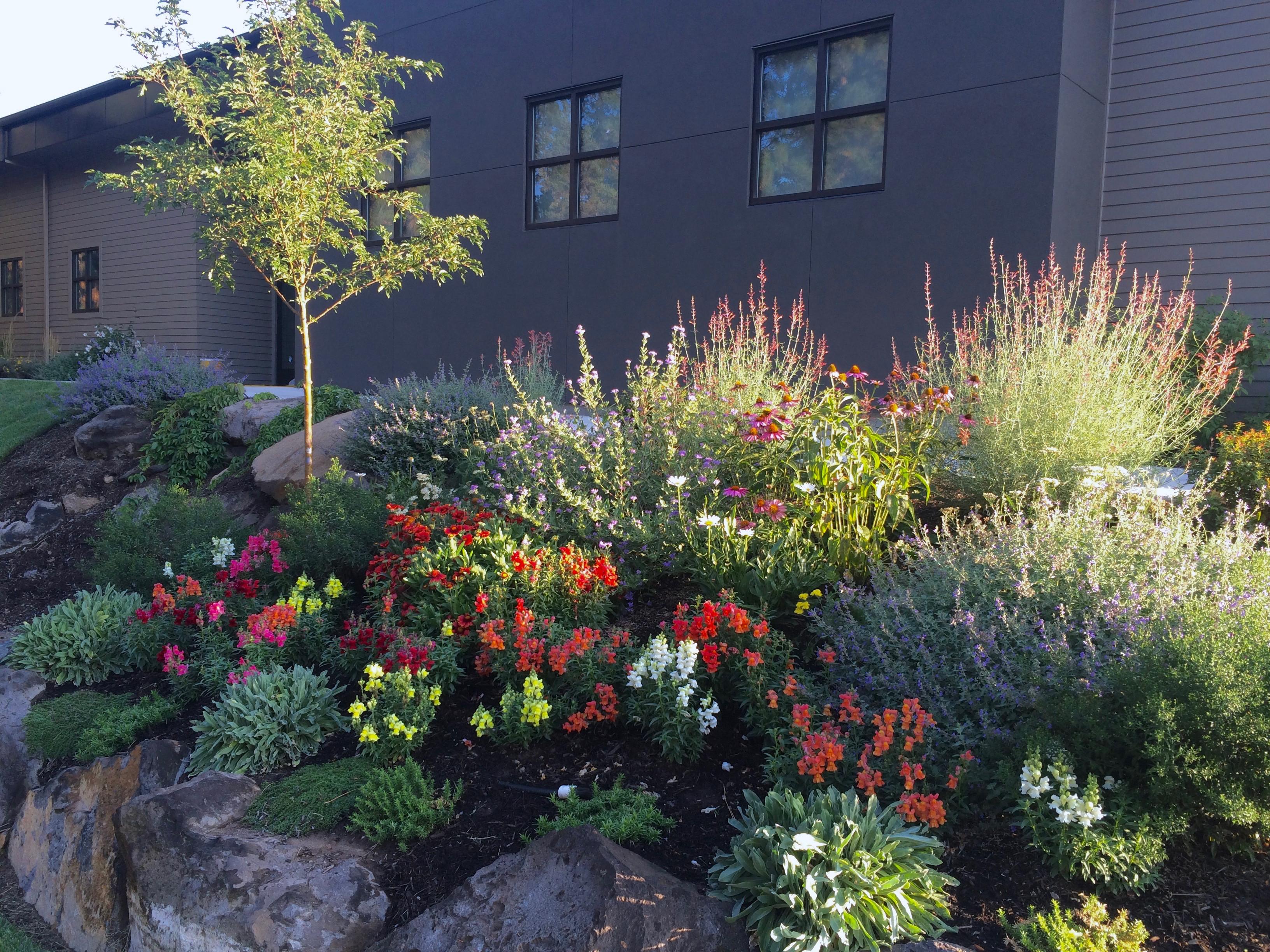 Garden Blog | Landscape Designer | Niche Gardens | Bend, OR