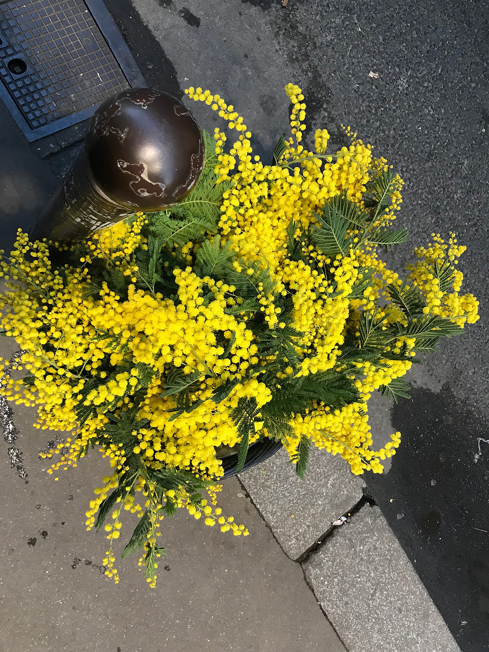 bouquet_ aude simon