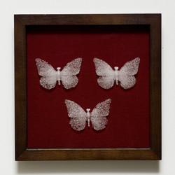 Mariposa mori III