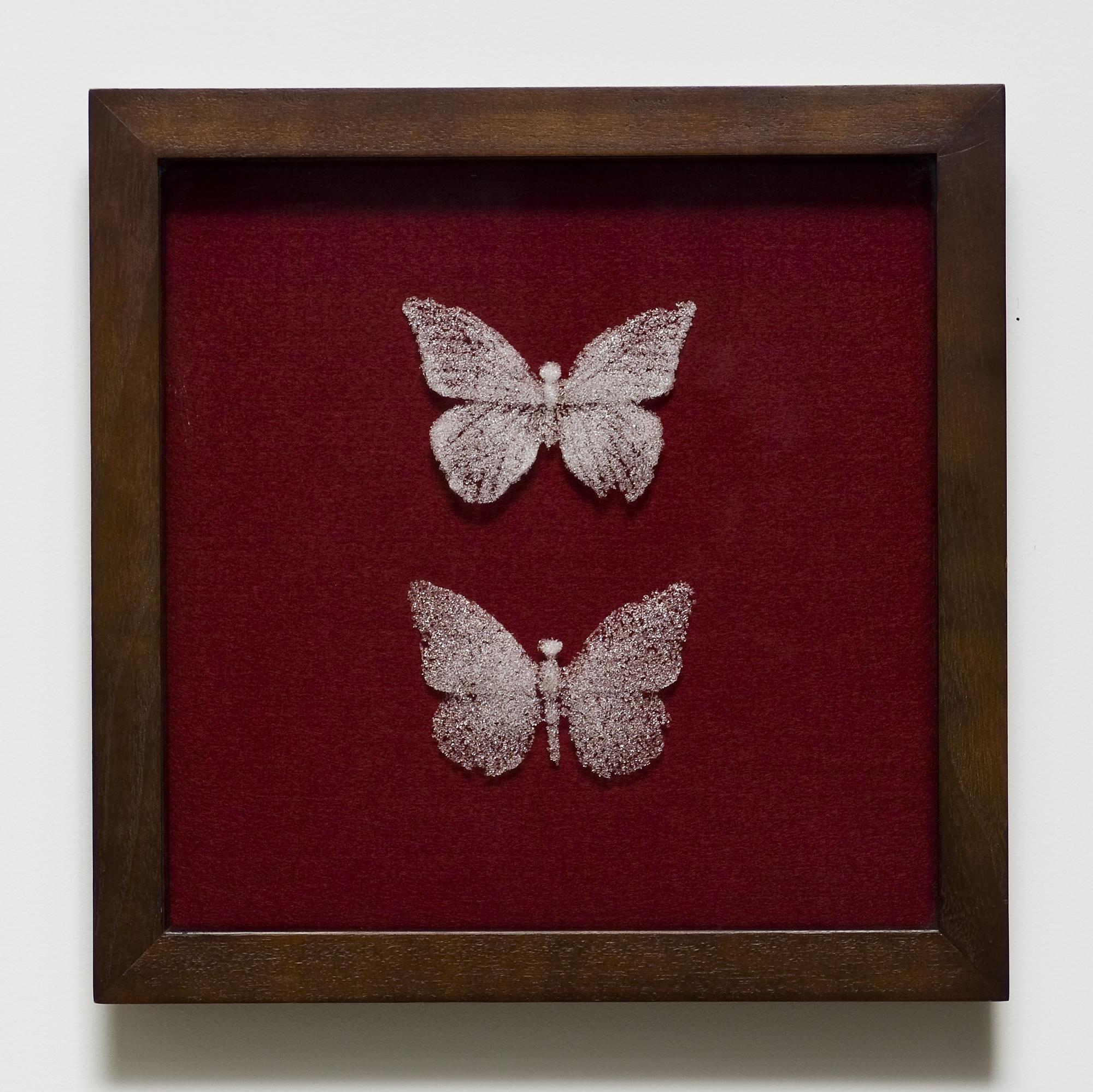 Mariposa mori II