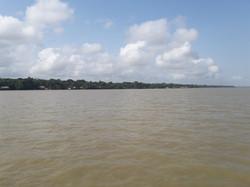 Rio Guamá