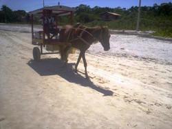 Transporte de charrete