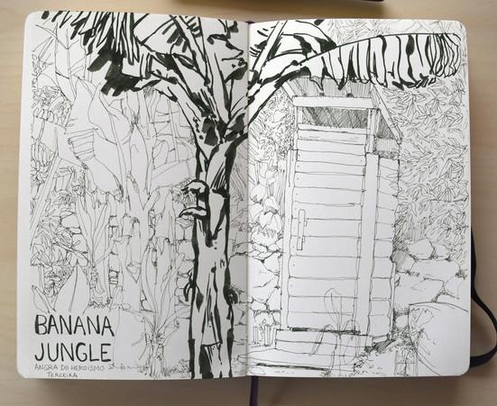 Banana Jungle - Açores