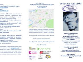 Roma, 16 e 17 novembre - VIII Giornata Studio AICPAM