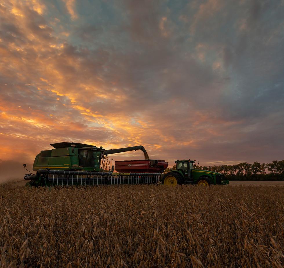20161001_PFS soybean harvest_0626.jpg