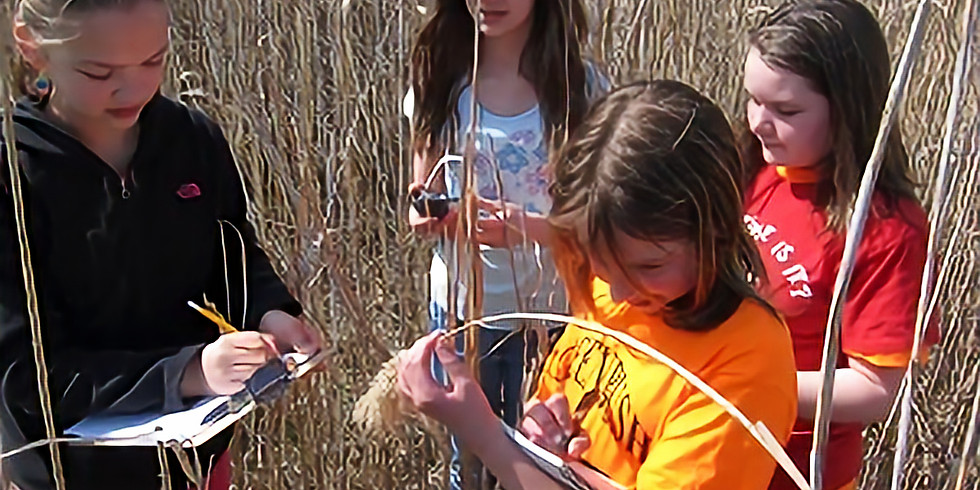 iMap in the Classroom - The Invasive Species Curriculum for Middle and High School Students
