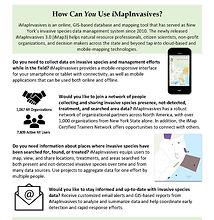 iMap Can Help You x Data Types Handout_P