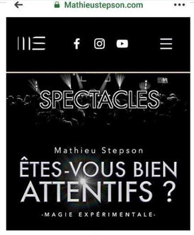 SITE OFFICIEL MATHIEU STEPSON