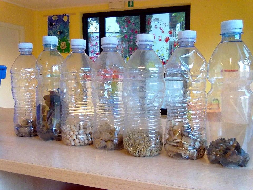 Bottigliette musicali legumi