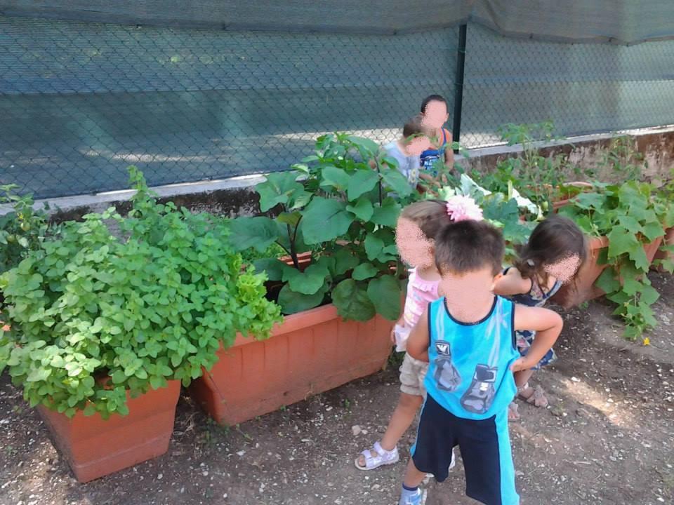 I bambini controllano l'orto